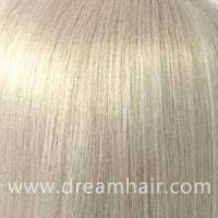 Hair Color Sample 1001#