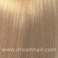 Hair Color Sample 18#