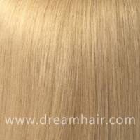 Hair Color Sample 24#