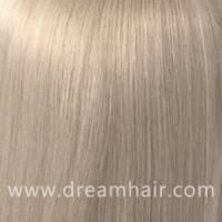 Hair Color Sample 60#
