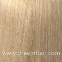 Hair Color Sample 613#