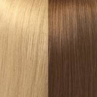 Hair Color Sample P8/24#