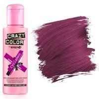 Crazy Color Cyclamen #41