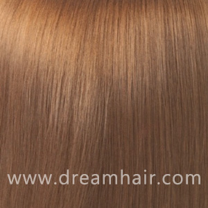Hair Extensions Color 12#