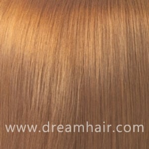 Hair Extensions Color 16#