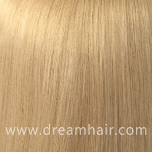 Hair Extensions Color 24#