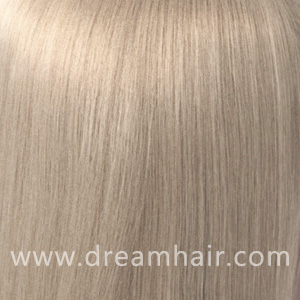 Hair Extensions Color 60#