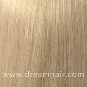 Hair Extensions Color 613#